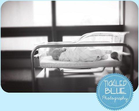 Tickled Blue_Charleston_sc_family_newborn_childrens_photographer_0328
