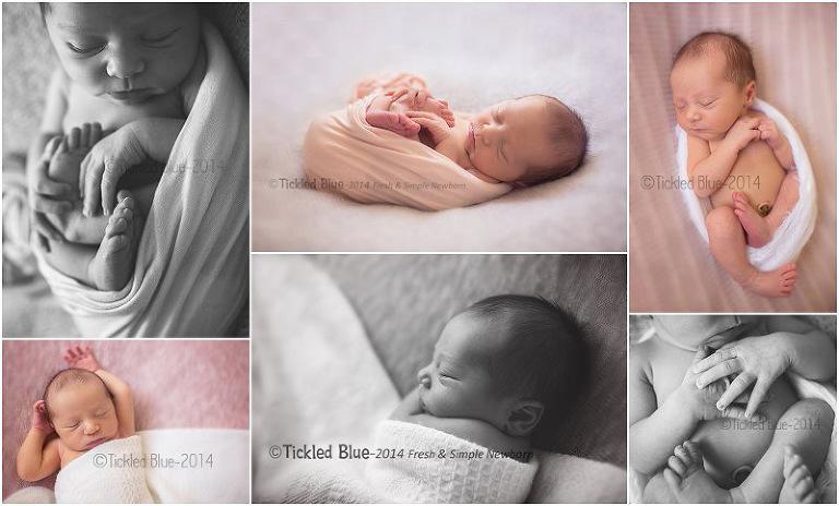 Tickled Blue_Charleston_sc_family_newborn_childrens_photographer_0360