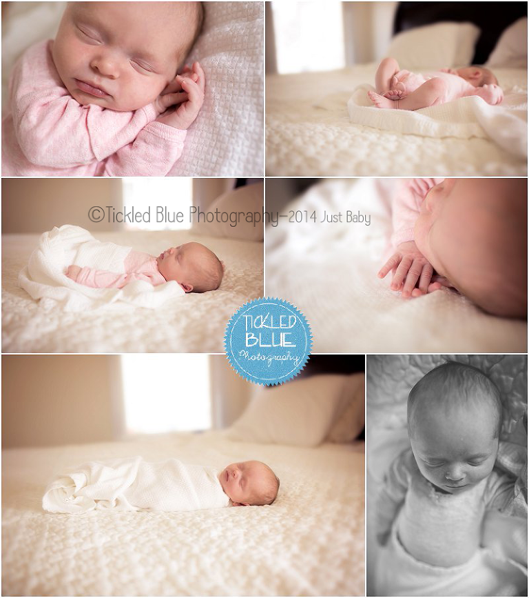 Tickled Blue_Charleston_sc_family_newborn_childrens_photographer_0521