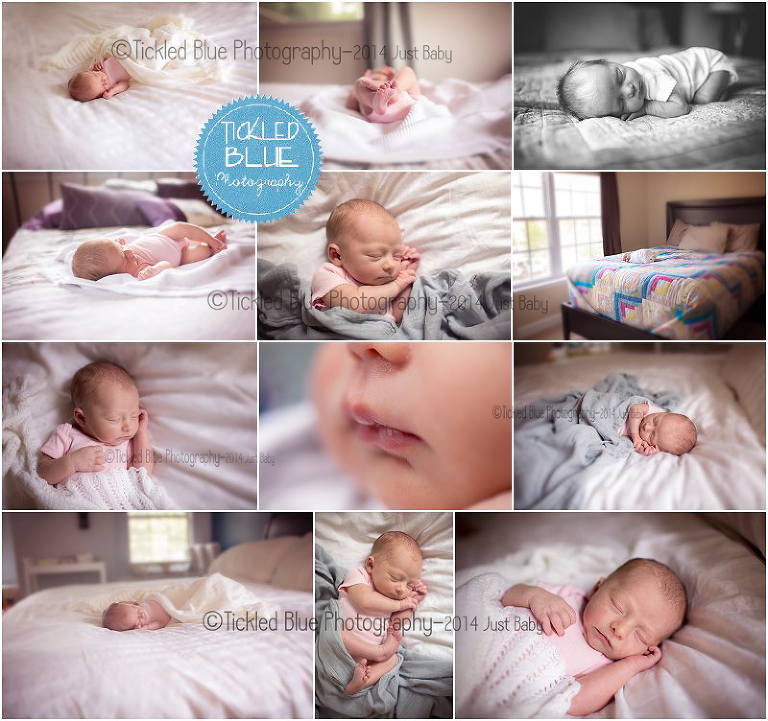 Tickled Blue_Charleston_sc_family_newborn_childrens_photographer_0525