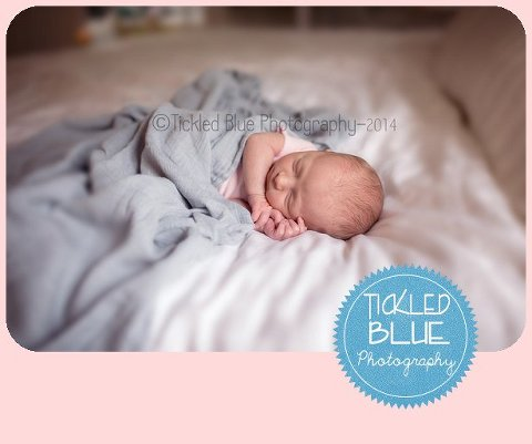 Tickled Blue_Charleston_sc_family_newborn_childrens_photographer_0542.jpg