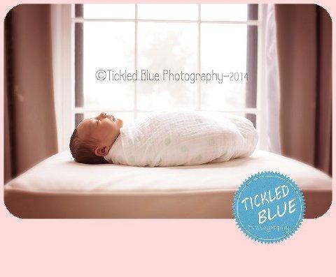 Tickled Blue_Charleston_sc_family_newborn_childrens_photographer_0867