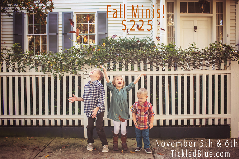 2016 fall mini sessions