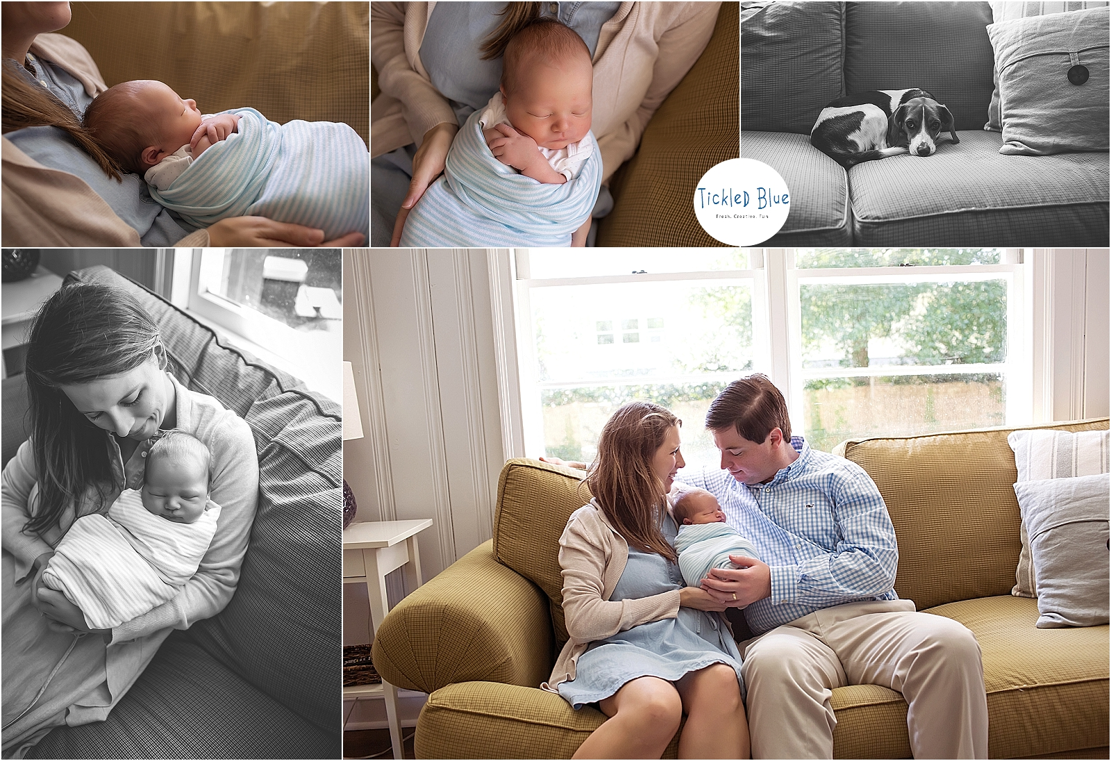 Tickled Blue_Charleston_sc_family_newborn_childrens_photographer_2062